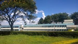 CAVS University of Nairobi